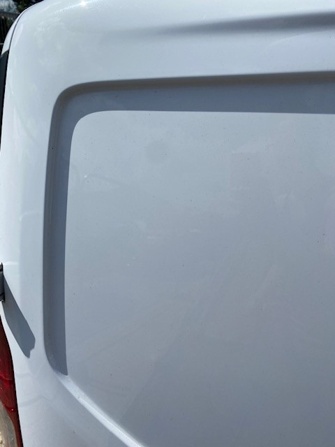 FORD CONNECT- NS REAR DOOR-6