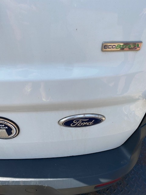 FORD CONNECT- OS REAR DOOR-1